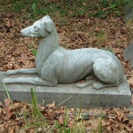 """Pet Cemetery – the search for """"Petey"""""""